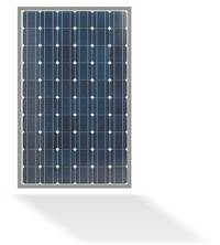 Monokristalline Solarmodule